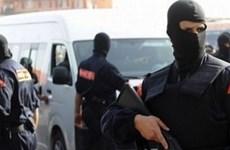 Cảnh sát Maroc tiêu diệt 186 phần tử khủng bố trong năm 2017