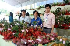 Hỗ trợ doanh nghiệp giảm rủi ro khi xuất khẩu nông sản sang Hàn Quốc