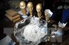 Triệt phá nhóm buôn ma túy giấu cần sa trong chiếc Cúp Vàng nhái