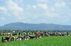 Canada và EU ra lệnh trừng phạt nhiều tướng lĩnh của Myanmar