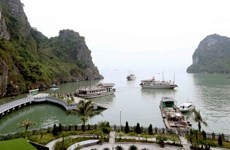 Quảng Ninh: Không có chuyện xẻ núi và bêtông hóa đảo Soi Sim