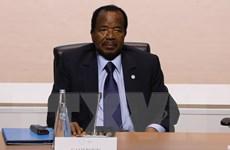Cameroon lùi thời gian bầu cử Quốc hội xuống tháng 10/2019