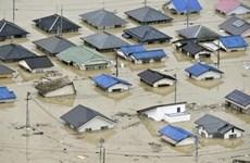 Số người thiệt mạng do mưa lũ ở Nhật Bản tăng lên gần 180 người