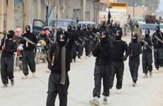 IS tuyên bố tấn công trạm kiểm soát an ninh của Saudi Arabia