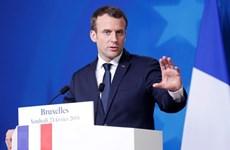 Tổng thống Pháp Macron yêu cầu cải tổ Văn phòng Tổng thống