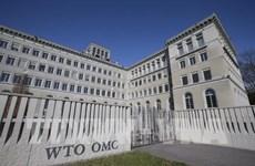Cải cách WTO: Con đường dài, không hề bằng phẳng
