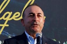 Thổ Nhĩ Kỳ, Mỹ nhất trí phối hợp giải quyết các vấn đề song phương
