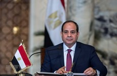 Ai Cập và UAE tăng cường quan hệ hợp tác song phương