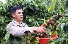 """Sắp ra mắt cuốn """"Chỉ dẫn địa lý-Di sản thiên nhiên và văn hóa Việt"""""""