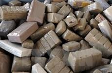 Ecuador bắt giữ lô hàng 1,1 tấn cocain vận chuyển tới Bỉ