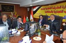 Việt Nam và Ai Cập sẽ mở rộng hợp tác trên nhiều lĩnh vực