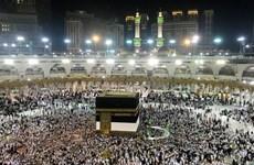Hàng chục người Ai Cập thiệt mạng trong lễ hành hương về Mecca