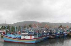 Ninh Bình hướng dẫn tàu thuyền không vào vùng nguy hiểm của bão
