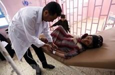 Saudi Arabia công bố người mắc tả đầu tiên ở khu vực giáp giới Yemen