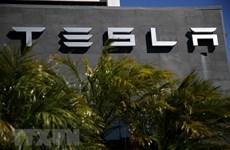 Công ty Tesla bị kiện vì lạm dụng người lao động nước ngoài