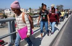 Mexico đề nghị Liên hợp quốc hỗ trợ về vấn đề người di cư