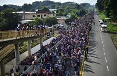 Tổng thống Trump: Binh sỹ Mỹ có thể bắn người di cư trái phép