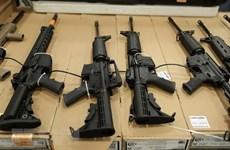 Phần Lan dừng cấp mới giấy phép xuất vũ khí cho Saudi Arabia và UAE