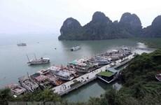 Quảng Ninh ngăn chặn vấn nạn đeo bám tàu du lịch ở vịnh Hạ Long