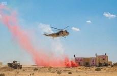 Ai Cập lần đầu tiên tổ chức triển lãm quốc phòng tại Cairo