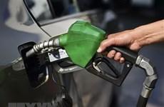 Giá dầu tăng hơn 1% trong bối cảnh Saudi Arabia giảm sản lượng dầu