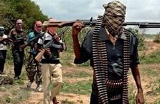 Quân đội Nigeria tiêu diệt hơn 100 tay súng Boko Haram