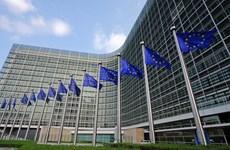 Một góc nhìn về sự thúc bách phải cải cách liên minh châu Âu