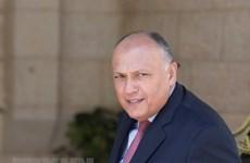 Ai Cập: Syria cần theo đuổi giải pháp chính trị để trở lại AL