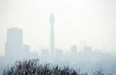 Chính phủ Anh nỗ lực ngăn ngừa tình trạng ô nhiễm không khí