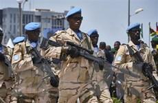 Nusrat al-Islam thừa nhận tấn công lực lượng LHQ tại Mali