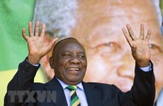 Nam Phi: Đã có hơn 74% số cử tri đăng ký tham gia bầu cử