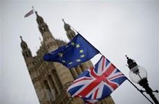 Anh rời khỏi Liên minh châu Âu: Lối thoát bấp bênh