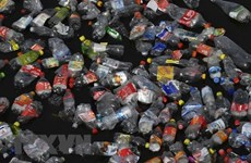 Rác thải nhựa làm ô nhiễm cả những vùng biển sâu nhất