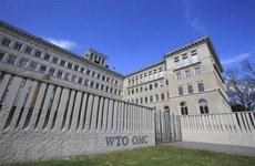Thụy Sĩ giải bài toán về cải cách Tổ chức Thương mại Thế giới