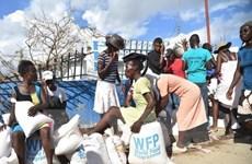 Đảo quốc Haiti và câu chuyện hậu trường của 'can thiệp nhân đạo'