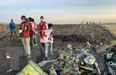 Rơi máy bay ở Ethiopia: LHQ công bố tổ chức có nhân viên tử vong