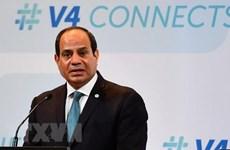 Tổng thống Ai Cập tin tưởng vào mối quan hệ hợp tác với Việt Nam
