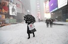 Nhiều bang ở nước Mỹ khốn đốn do đợt bão tuyết cuối mùa