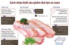 [Infographics] Cách nhận biết sản phẩm thịt lợn an toàn