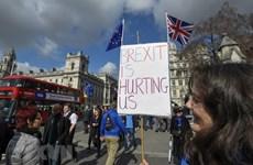 Nghị sỹ Anh ủng hộ Hạ Viện tìm lựa chọn khác cho tiến trình Brexit