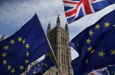 Lý do thỏa thuận Brexit trong tình trạng 'hôn mê'
