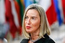 EU tái khẳng định lập trường liên quan cao nguyên Golan