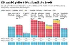[Infographics] Kết quả bỏ phiếu 8 đề xuất mới cho Brexit