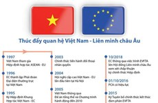 [Infographics] Thúc đẩy quan hệ Việt Nam-Liên minh châu Âu