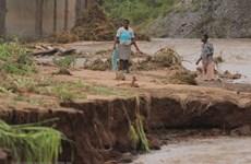 LHQ triển khai chiến dịch ngừa dịch bệnh sau thiên tai ở Mozambique