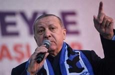 Bầu cử Thổ Nhĩ Kỳ: Kiểm lại phiếu ở Istanbul sau khi có khiếu nại