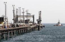 Giá dầu thế giới chạm mức cao nhất kể từ đầu năm 2019