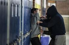 Bạo lực học đường: Chuyện không chỉ riêng của Việt Nam