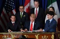 """Cựu Đại sứ Mỹ tại Canada: USMCA """"chết yểu"""" sau 14 tháng đàm phán"""