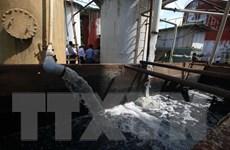 Hậu Giang: Yêu cầu tạm dừng sản xuất nhà máy đường gây ô nhiễm